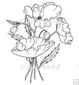 Poppy Delight Digital Stamp/Lines Art