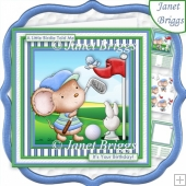 GOLF IT'S A BIRDIE 8x8 Decoupage & Insert Kit