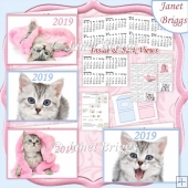 KITTENS 2019 UK Easy Fold Purse Calendars