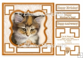 Cat & Mouse (2) - 7.5 x 7.5 Card Topper With Greetings & Decoupa