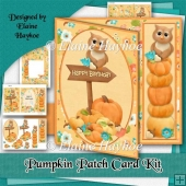 Pumpkin Patch Card Kit