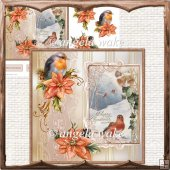 Robin redbreast and poinsettias card and decoupage