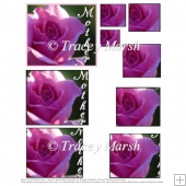 'Mother' Pink Rose Square Pyramage Sheet