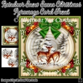 Reindeer Snow Scene Christmas Pyramage Card Front