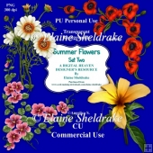 Summer Flowers Set Two - CU Designer Resource For Commercial Use