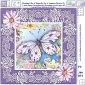 Floating Like A Butterfly On A Summer Breeze Decoupage Card Kit