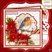 ROBIN & POINSETTIA 7.5 Christmas Decoupage & Insert Kit