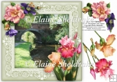 The Canal Chirbury - 8 x 8 Floral Decoupage Card Topper