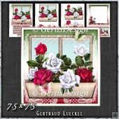 Flower Window Spring Roses Card Kit 1420