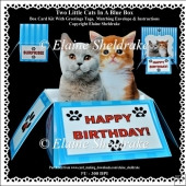 Two Little Kittens In A Blue Box - Box Card Kit With Greetings