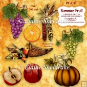 Summer Fruit Designer Resource CU4CU PU 300 dpi For Paper Crafts