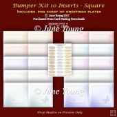 Bumper Kit 10 Inserts - Square