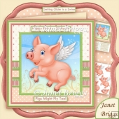 PIGS MIGHT FLY Male Version 8x8 Humorous Decoupage Mini Kit