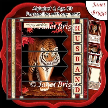 TIGER 7.5 Alphabet and Age Quick Card Kit Create Any Name