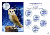 Christmas Barn Owl (2) - 5 x 7 Card Topper & Assorted Greetings