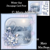 Winter Sun - Decoupage Card Front