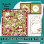 Owl Christmas Square Card Kit