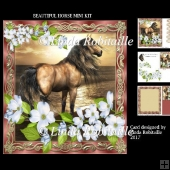 Beautiful Horse Mini Kit