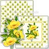 Yellow Poppy 5x5 Square Box