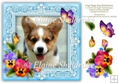 Corgi Puppy Dog & Pansies 8 x 8 Card Topper With Decoupage