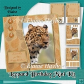 Leopard Birthday Mini Kit