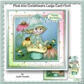 Pixie And Coneflowers Large Card Front