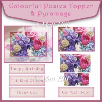 Colourful Posies Topper & Pyramage