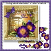 Wishing Well And Flowers On Gold Card Front