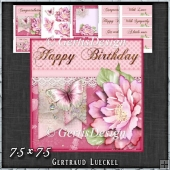 Pink Butterfly Flower Polkadots Card Topper Kit 1424
