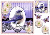Pretty lilac bird with cream roses & black lace 8x8