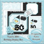 Tweets 30th Birthday Shadow Box Card