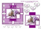 Lilac kitty Cat - 6 x 6 Card Topper & Decoupage