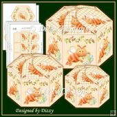 Bee Hexagonal Gift Boxes