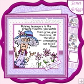 STELLA on RAISING TEENAGERS 7.5 Humorous Decoupage Card Kit