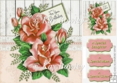 for your birthday peach roses 8x8