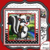 Getting Older Stinks 8x8 Humorous Skunk Decoupage Mini Kit