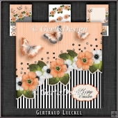 Vintage Stripes and Flowers Card Kit orange 1123
