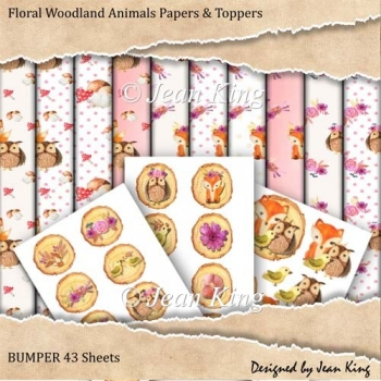 Bumper 43 page Woodlands A4 Papers and Toppers