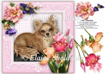 Cute Chihuahua Puppy Dog - 8 x 8 Floral Decoupage Card Topper