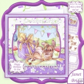 A LITTLE TIED UP 7.5 Birthday Decoupage & Insert Kit