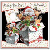 Poppin Box Card - No Peeking