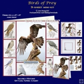 Birds of Prey - 3-Sheet Mini-Kit