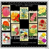 Twelve Vintage Flower Packets - Set Two - Printable Clipart