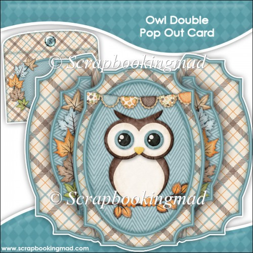 Owl Double Pop Out Card & Envelope - Click Image to Close