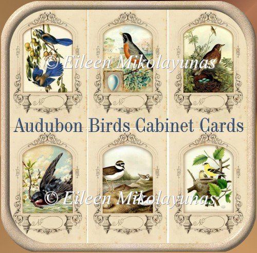 Audubon Birds Vintage Cabinet Cards for Toppers, Inserts, Tags - Click Image to Close