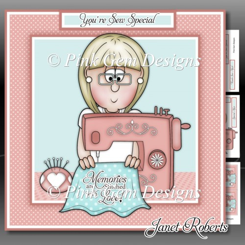Sew Special Mini Kit - Click Image to Close